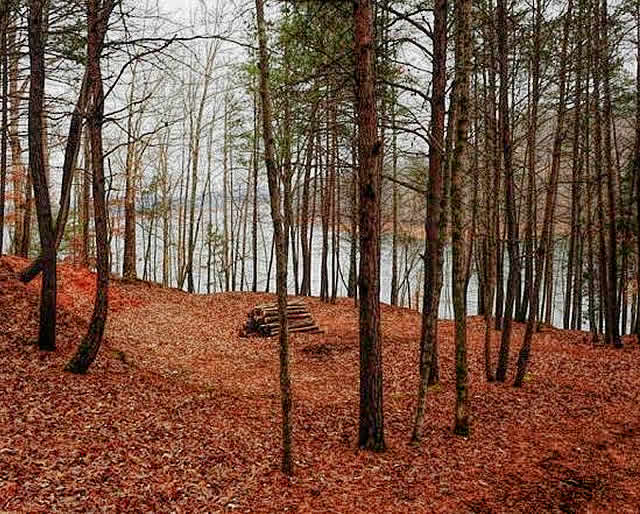 Rainbow Resort Lots for Sale on Norris Lake